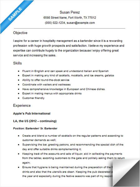 experience resume objective examples