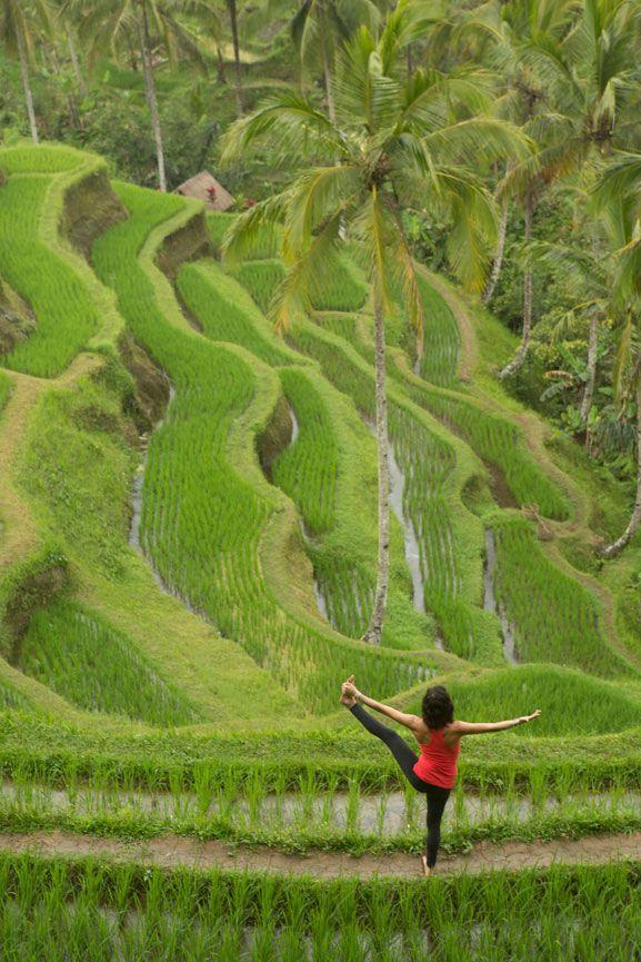Över 1 000 bilder om Yoga & Nature på PinterestYogaposer, Hälsa ...