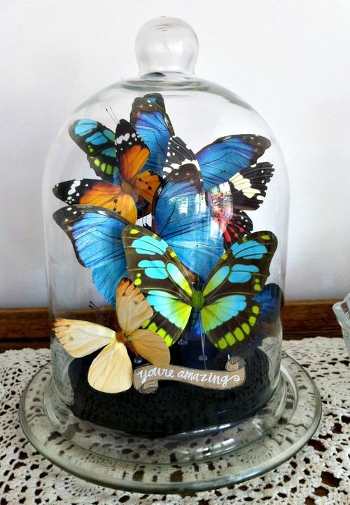 DIY Butterfly Bell-Jar I saw this gorgeous butterfly bell jar in Design Sponge at Home. But it's made with real butterflies and they are really expensive, and delicate to boot! But i loved th…