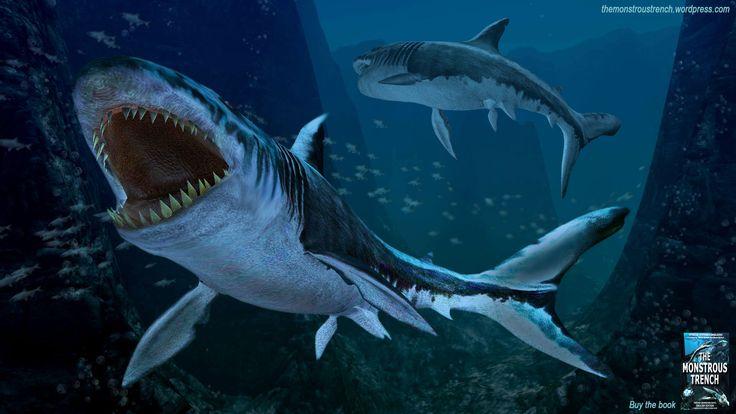 """Megalodon SHark from """"The Monstrous Trench"""" deep-sea fantasy-adventure novel. #megalodon #megalodons #megalodonshark #megashark #giantshark"""