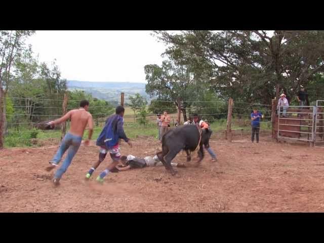 Treinamento de Rodeio - Claraval MG - Acidente Video 6