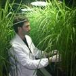 Scienze agrarie