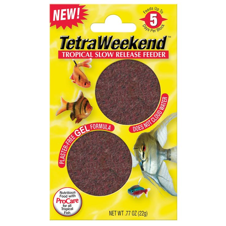 Tetra 5 Day Gel Fish Feeder