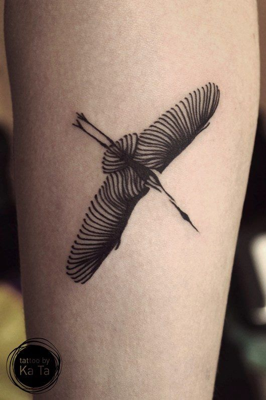 Ka Ta, a Hungarian illustrator and tattooer