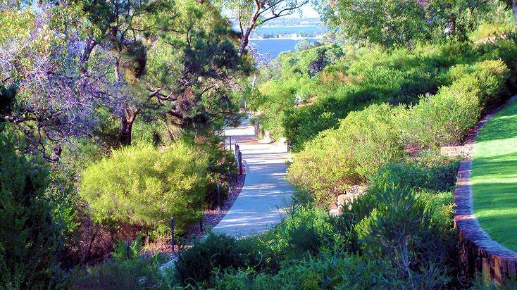 Botanical Garden Walkway. | Kings park perth, Australian ...