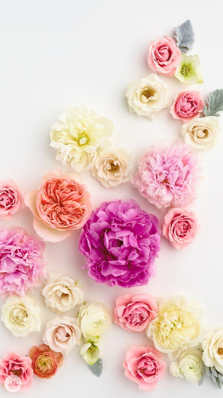 The 25 best flower wallpaper ideas on pinterest pretty and flower wallpaper wallpapers wallpapers for desktop sciox Choice Image