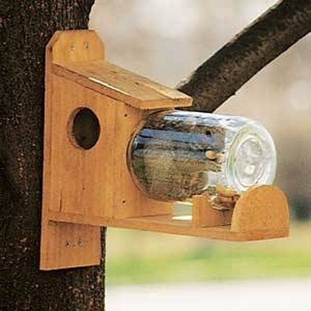 Feeders give squirrels something to eat other than your garden plants.
