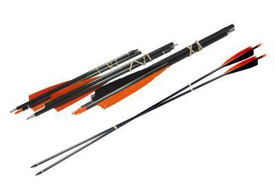 3-Piece Take Down Arrows $60