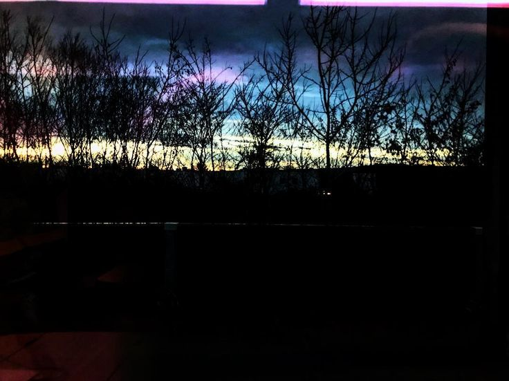 Es mi 4000 y quería que fuese especial quizás no era el día o simplemente el lugar...Bratislava la hemos leído en diagonal y por esa especie de pulsión #wanderlust de hacer una muesca nueva al mapa de países pisados tocados y sentidos alguna vez.  A pocos kilómetros de Viena y tan tremendamente lejos de lo que llena el ojo de encuadres suculentos. Por eso ya en el tren y regresando de la excursión...os comparto el color del cielo extraño atrapado por las telarañas de esos árboles…