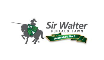Sir Walter Buffalo Turf