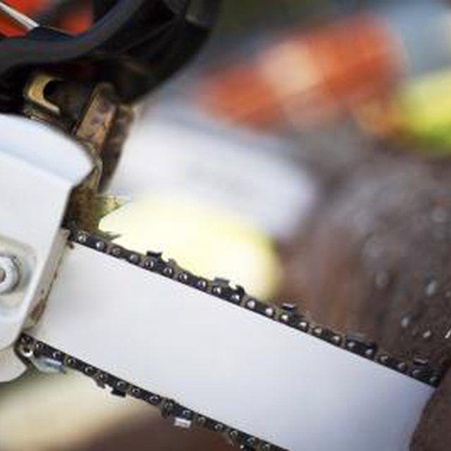 Poulan 361 Chain Saw Specs