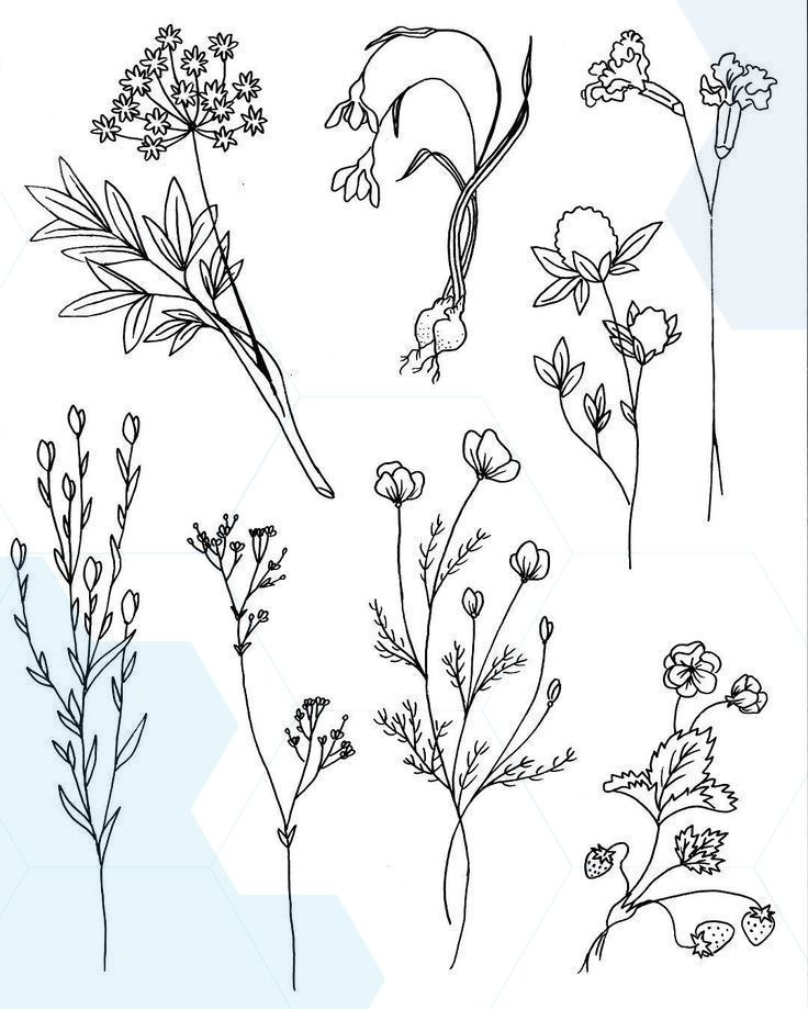 Image Result For Stick And Poke Tattoo Flower Tattoos Flower Drawing Stick Poke Tattoo