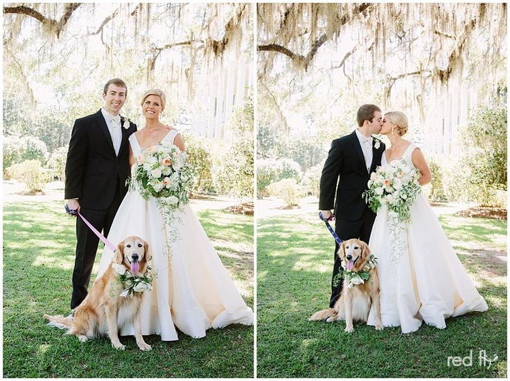 Golden Retriever Scout With Her Parents On Their Wedding Day | Anne Barge Bride | Georgia Wedding