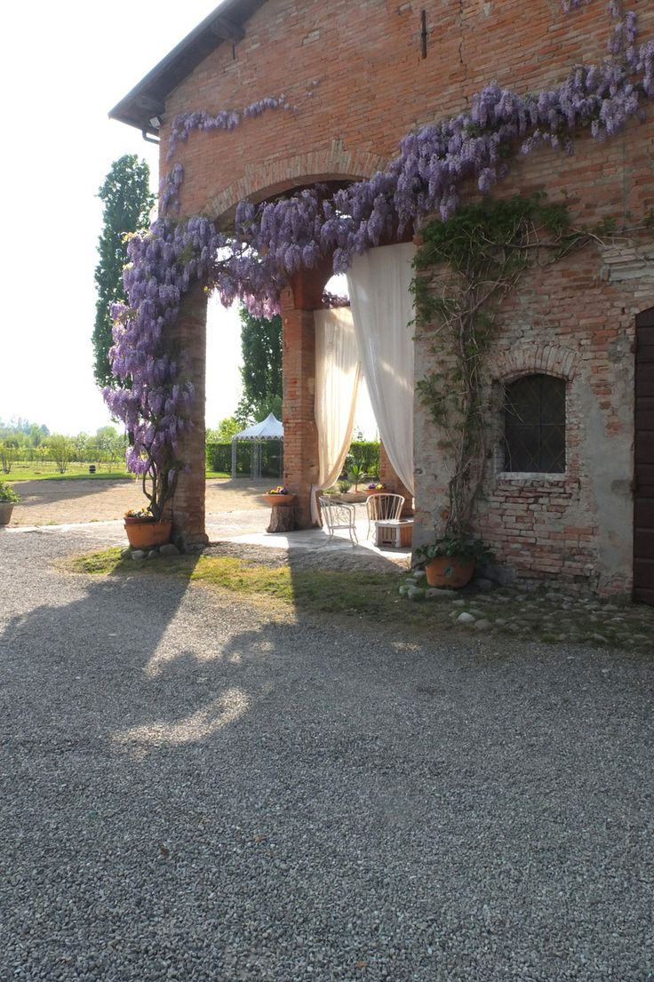 Glicine in fiore, Corte Dei Paduli - Wedding Location - www.deipaduli.org
