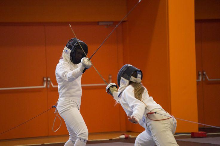 fencing #fencing hungary #hungary Pannonhalma #Pannonhalma tothgabor #tothgabor