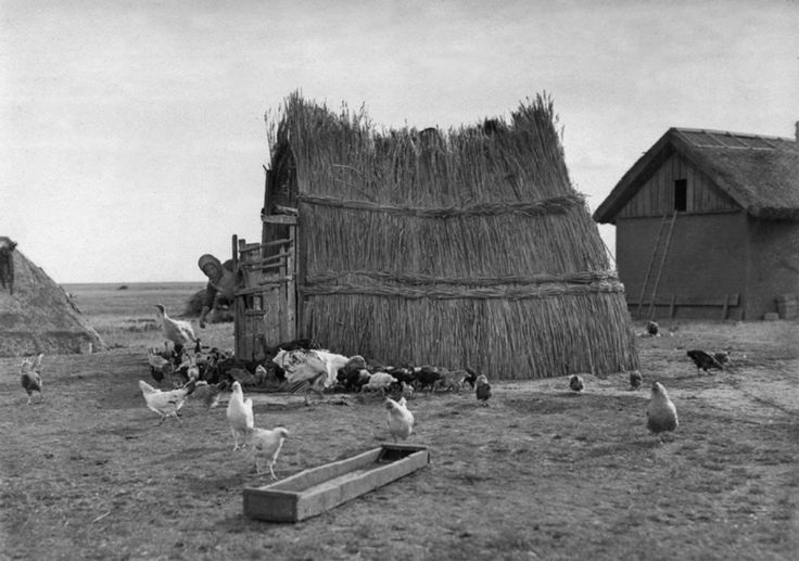 Pásztortanya vasalóval. 1930-as évek.