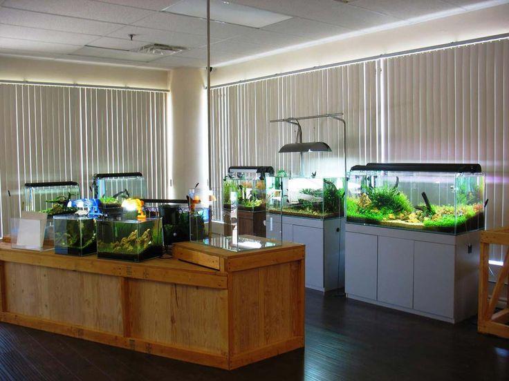 Best Aquarium Decoration Ideas ~ http://www.lookmyhomes.com/creative-aquarium-decoration-ideas/