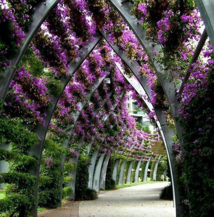 South bank park lands, Brisbane