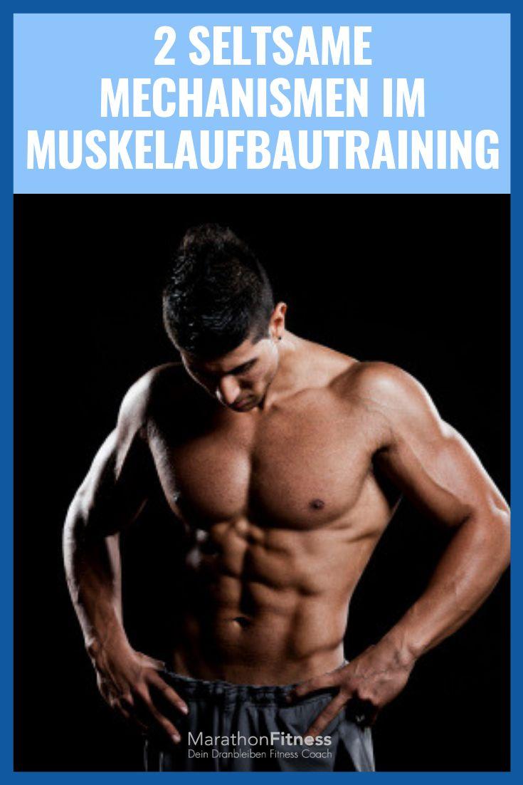 Muskelaufbautraining: 2 Mechanismen, die Du kennen ...