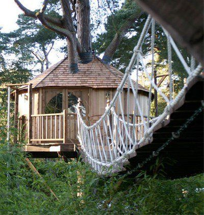 Future Tree Houses 819 best tree houses images on pinterest | treehouses
