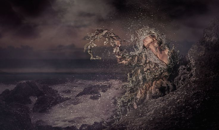 Taniwha  By Mandi Lynn New Zealand Creative Photographer of the Year 2017