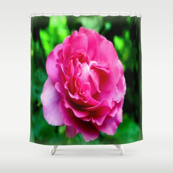 Rose, Flowers, Petals, Nature, Vignette, Macro, Photography.