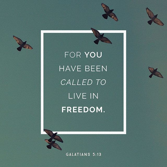 For you have been called to live in freedom, my brothers and sisters. But don't use your freedom to satisfy your sinful nature. Instead, use your freedom to serve one another in love. Galatians 5:13