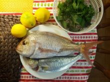 ready to be cooked for dinner.  nice freshly caught fish