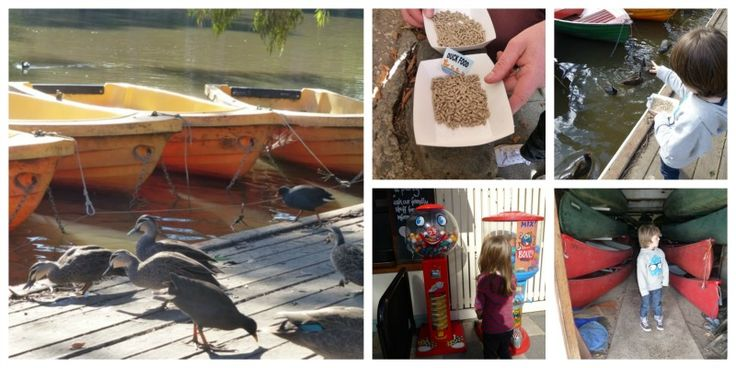 Row, row, row your boat...Studley Park Boathouse kid-tested review