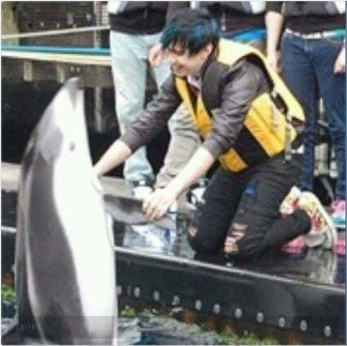 From Much Music's 'My Date With...Marianas Trench' ~Josh Ramsay playing with a dolphin.
