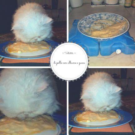 Vellutata di #pollo con #albume e #zucca | Elicats Homemade #Petfood