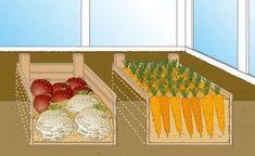 Gewächshaus als Gemüselager nutzen – Cornelia Frommann