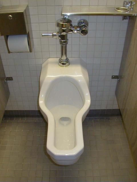 The Womens Urinals Of Texas Am University  Female -6466
