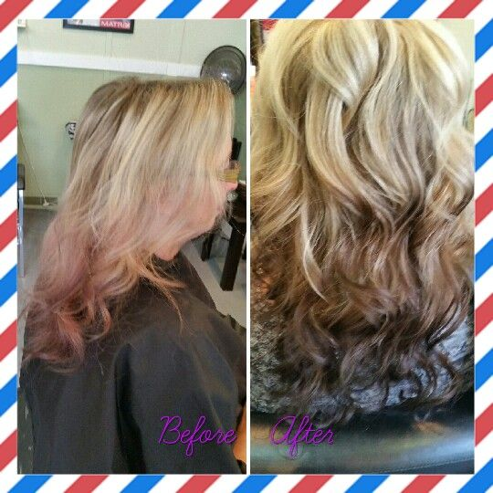 From a faded violet ombre, to a Lucious blonde and light brown to dark brown ombre.