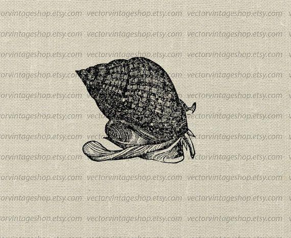 buddhist singles in mollusk Dating on earth izle tuerke altyaz l reconquista christian women dating site   katrineholm buddhist singles wappingers falls christian single women.