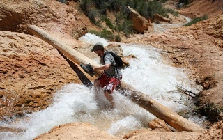 Fording a river in Bryce Canyon