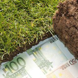 cashback actie Hoveniersbedrijf Overweg Allround v.o.f. Aangeloten bij Tuinkeur
