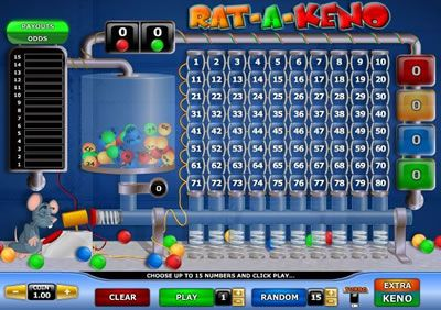 Play Rat-a-Keno at Ace Live Casino with extra keno special bet.