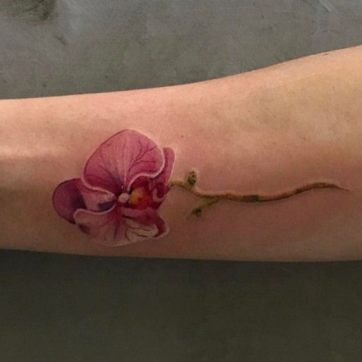 Tête artificielle en orchidée avec 9 touches roses – Vickerman   – Tattoo