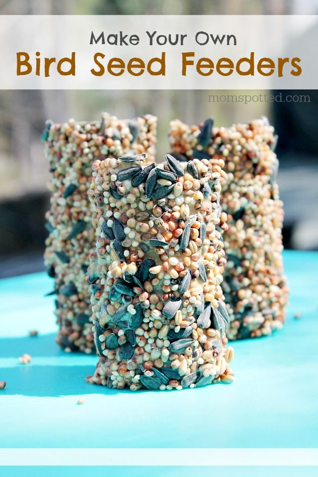 how to make your own bird seed feeders fun crafts with