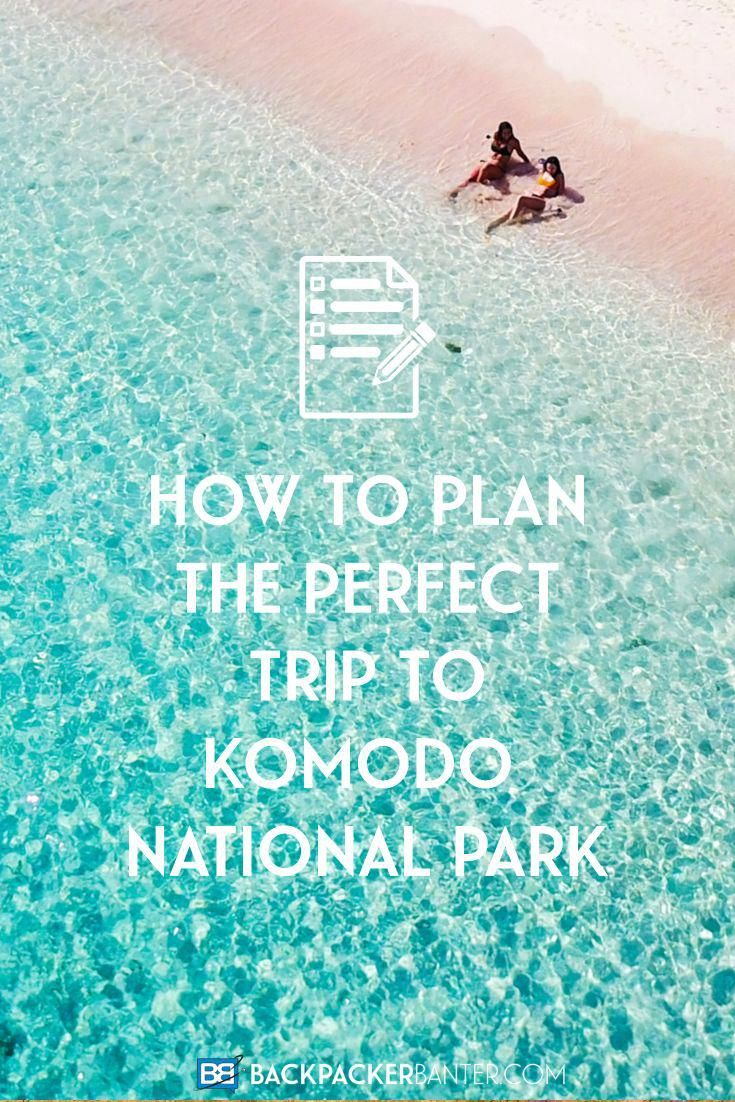 Planning a trip to Komodo National Park Here's everything you ...