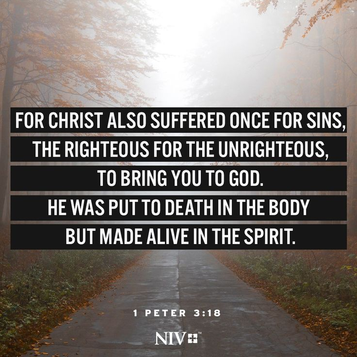 NIV Verse of the Day: 1 Peter 3:18