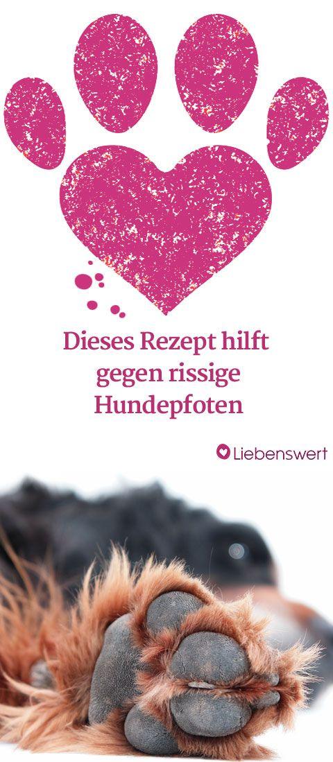 http://www.liebenswert-magazin.de/das-hilft-rissigen-hundepfoten-1111.html