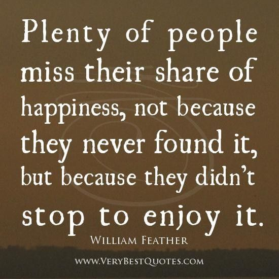 Quotes About Enjoying Life Brilliant Best 25 Enjoying Life Quotes Ideas On Pinterest  Happy Journey