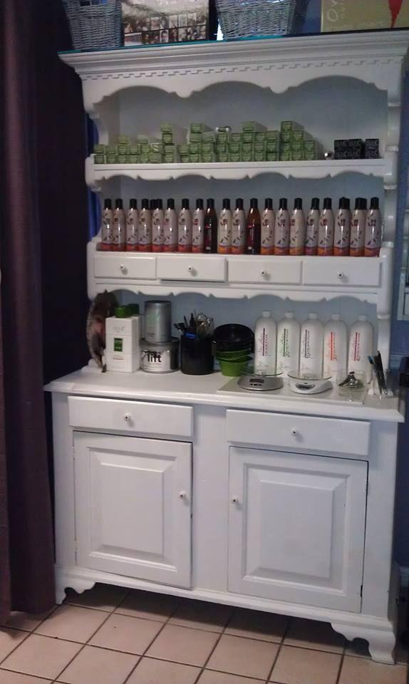 Belle Elan Salon organic color bar