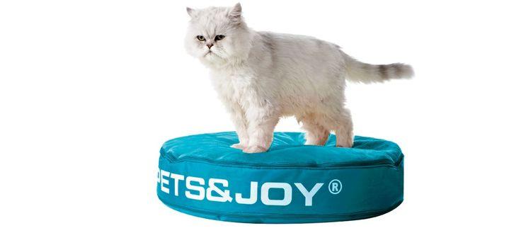 Cat Bed ‹ Sit&Joy ® | www.isopearls.be/zitzakken