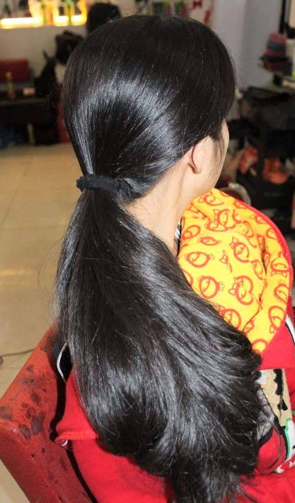 Thick Silky Pony Thick Hair Remedies Thick Hair Styles Long Hair Styles