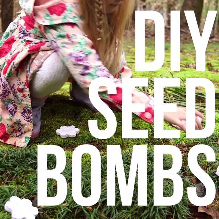 DIY Seed Bombs