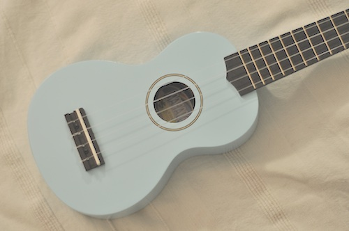 The Light Blue Mahalo Ukulele, available on Amazon. This was my starter Ukulele.