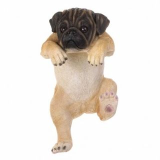 $39.95 - This mischievous pug named Daisy is climbing with all her might!   A charming accent for your favorite potted plant or your fence that will give your space some personality.